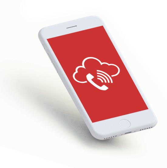 telefonia VoIP - Una única solución para voz, datos y videoconferencia integrada con tus sistemas de comunicación internos. Telefonía, Centralitas, Seguridad informática, videovigilancia, videograbación