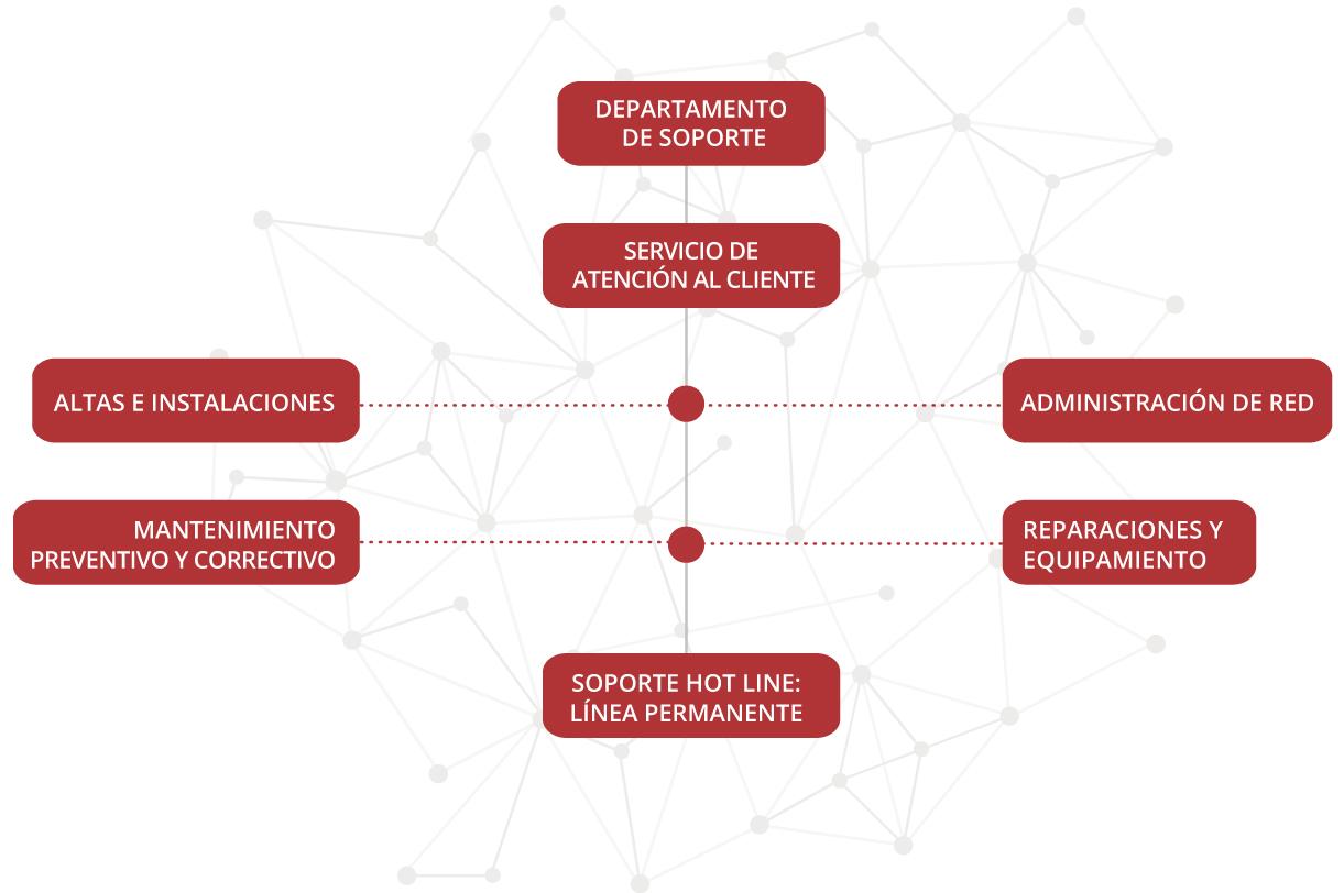 estructura departamento de soporte